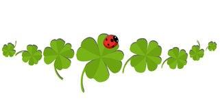 clovers-ladybug-banner-eight-51059382.jpg
