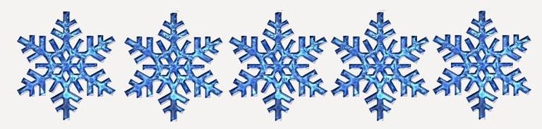 Snowflake 5 Stars.jpg