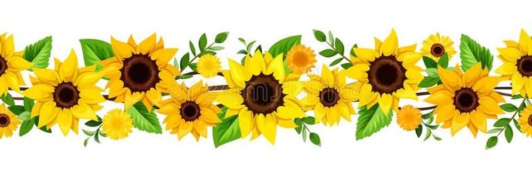 vector-horizontal-seamless-border-yellow-sunflowers-green-leaves-horizontal-seamless-border-yellow-sunflowers-vector-184014235.jpg